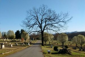 A late winter day at Forest Hill Cemetery in Morganton